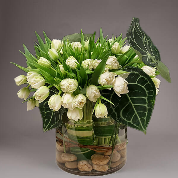 Luscious white tulips and tropical Amarylliss Leaves