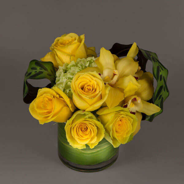 Surprise for any occasion with golden yellow roses